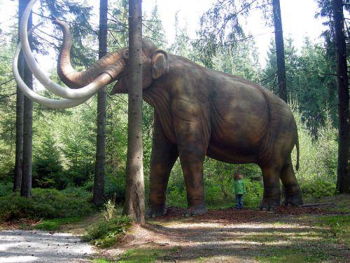 Mammoth_Mammut_model