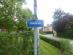 Fenomenaal zicht op het straatnaambordje van de Berkenlaan.