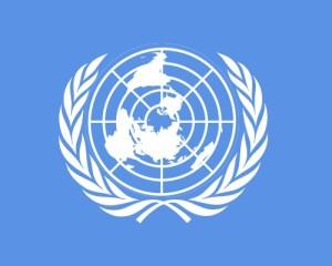 De VN wil dat Vlaanderen de files afschaft. Een jarenlange traditie die niet mismeesterd mag worden, vindt men daar.